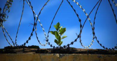 5 viisi kuidas palvetada nende eest, kes on vanglas, nii nagu oleksid ise seal