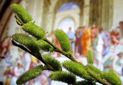 Триумфальный въезд в Иерусалим до Иисуса